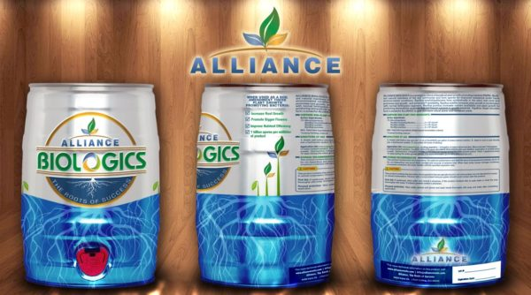 Alliance Roots Keg Concept